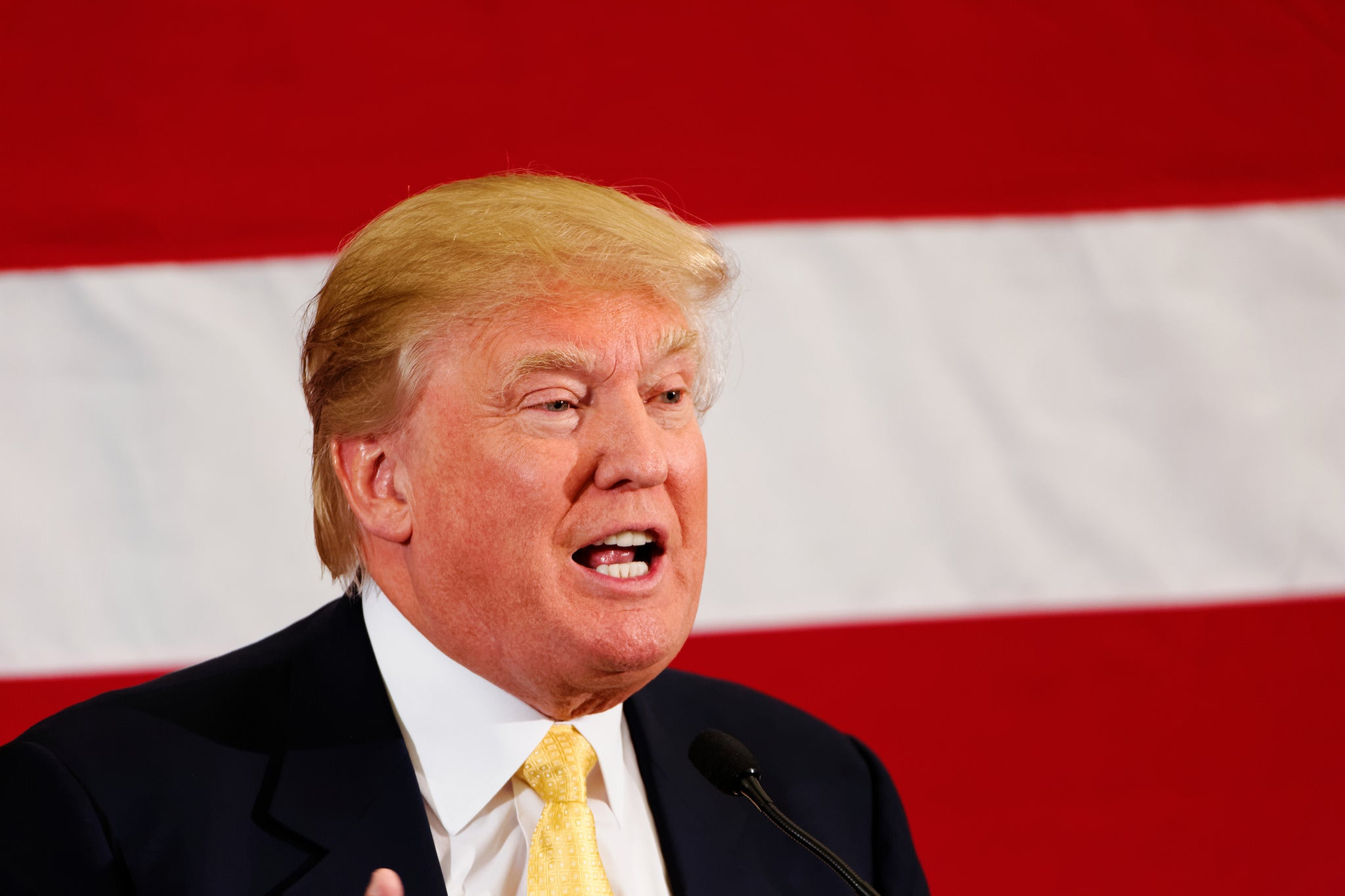 Donald Trump Tax Records Show He Could Have Avoided Taxes for