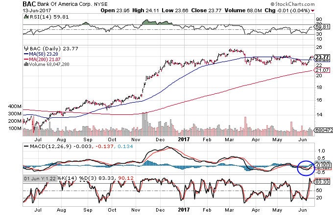 Chart showing the trailing-12-month performance of Bank of America Corporation (BAC) stock