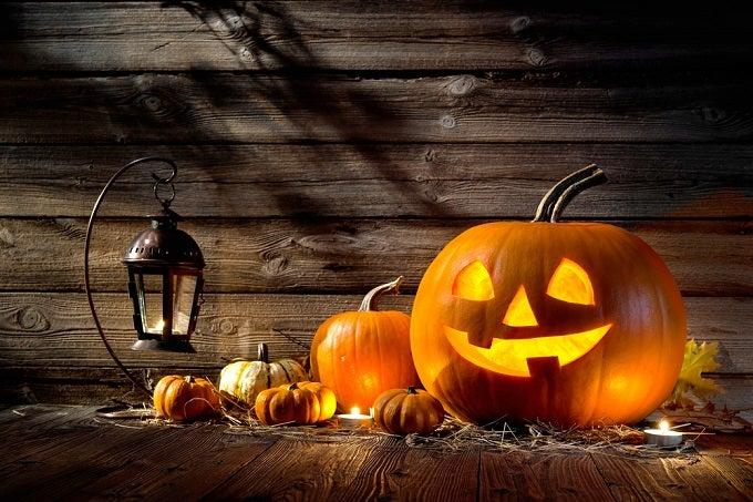Forex broker trading against halloween