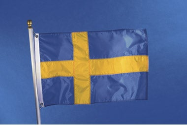 The Nordic Model: Pros and Cons