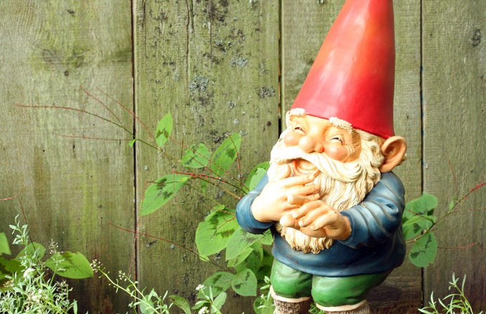 Elves And Gnomes: Fairy Tale Investment Terms