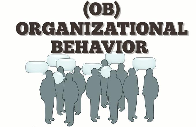 Disneys organizational behavior