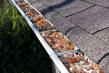 6 Must-Do Fall Maintenance Tasks