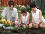 The Economics Of Gardening: Can You Dig It?