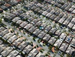 Choosing Between The Suburbs And The City