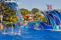 SeaWorld IPO Looks To Raise $500 Million: Should You Buy?