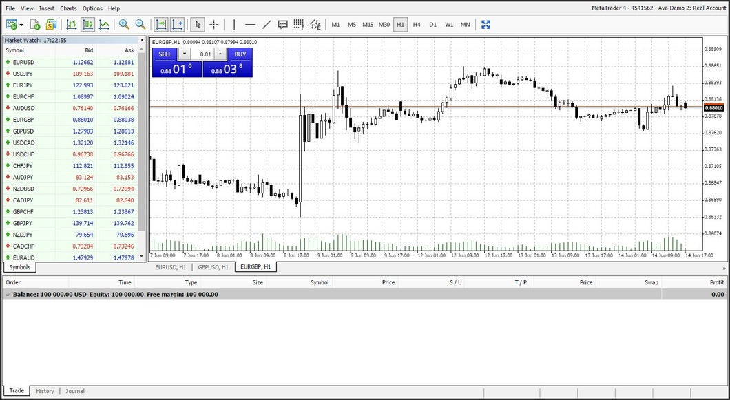 view of metatrader overview and platform
