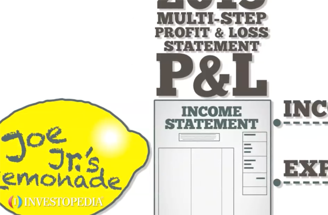 profit and loss statement p l