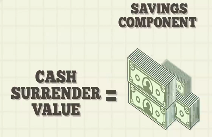 Cash Value Vs Surrender Value What S The Difference