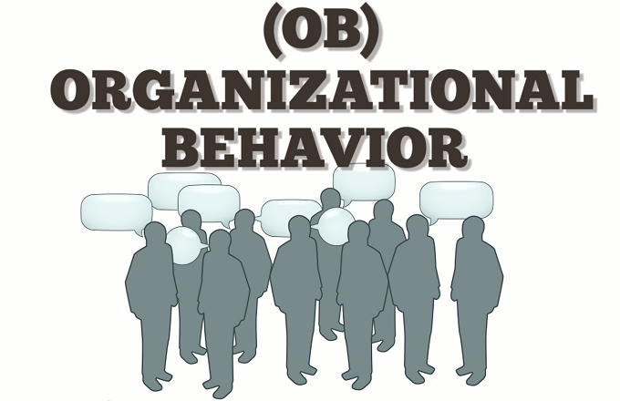 group behavior in organizations