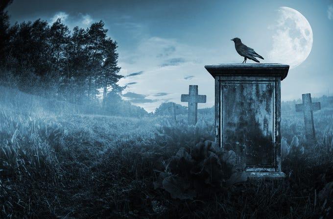 6 morbid careers with devilish incomes