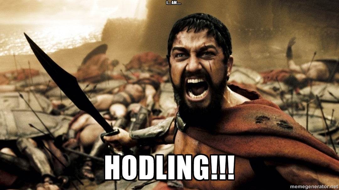 Image result for Hodling