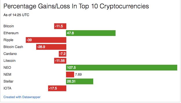 best cryptocurrency primer