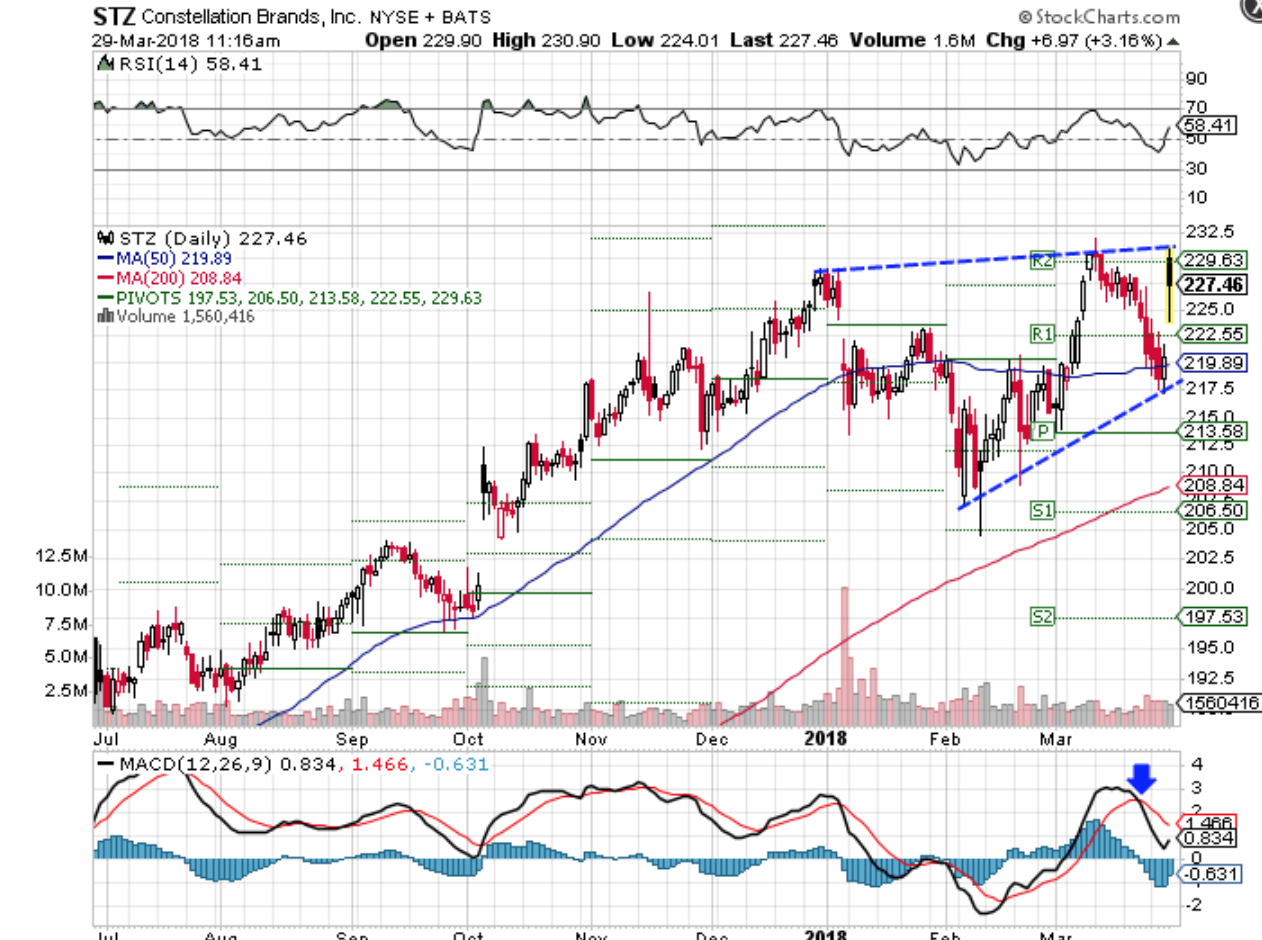 Technical chart showing the performance of Constellation Brands, Inc. (STZ) stock