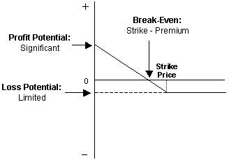 Graph showing a scenario where a bearish market results in profit for a long put option